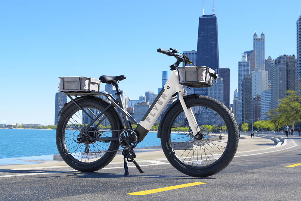 Flyer M880 electric bikes with city skyline